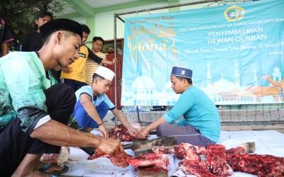 Pandemi, Santri SMAU Haf-Sa Bagi-Bagikan Daging Qurban